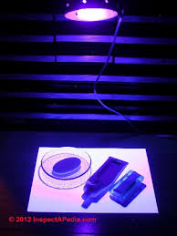 black light mold detection how to buy use a black light uv light woods l for building