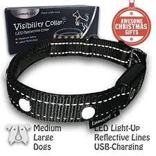 light up collar amazon amazon com holiday sales illuminating led dog collar for medium