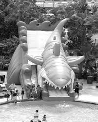 Houston Party Rentals Houston Party Rentals Water Slides Shark Slide In Black And