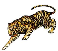 how to draw a tattoo style tiger with colored pencils