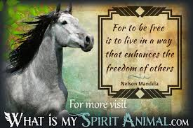 quotes sayings animal quotes sayings