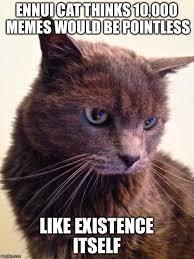 Cat Meme Maker - poster templet matthewgates co