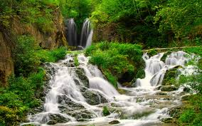 small forest river with beautiful waterfalls coast green grass