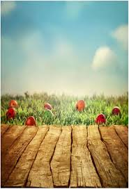 easter backdrops 2017 5x7ft easter photography backdrops scenic wooden photo