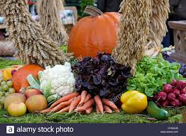 thanksgiving fruit and vegetables and cereals stock photo