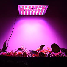 1000 watt led grow light reviews 5 best 45 watt led grow lights review for you