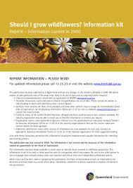 fairhill native plants eka kokadir of university of queensland australia