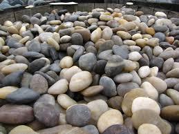 Decorative Rocks For Garden 29 Best Garden Images On Pinterest Gardening Landscape Design