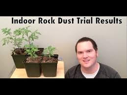 What Is Rock Dust For Gardens Rock Dust Indoor Trial 2014 Results Alberta Garden