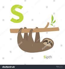 letter s sloth zoo alphabet english stock vector 405176959