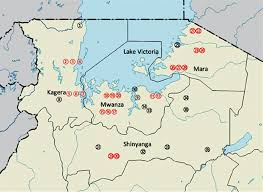 Lake Victoria Map Prevalence Of Schistosomes And Soil Transmitted Helminths Among
