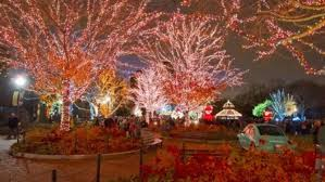 best christmas lights in chicago the 10 best things to do during the holidays in chicago chicago