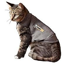 sweaters for cats sweaters for cats amazon com