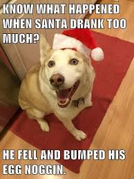 Doge Meme Christmas - dad joke dog christmas edition i has a hotdog dog pictures