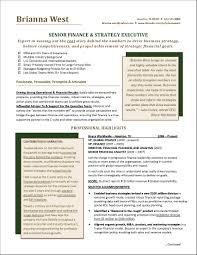 senior executive resume senior executive service resume exle best of executive resume