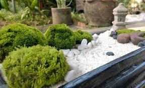 miniature zen garden home design ideas and inspiration