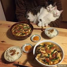jeux cuisine gar輟n les 181 meilleures images du tableau stuff sur
