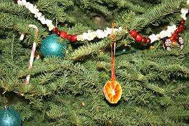 homemade christmas ornaments made with real food cheeseslave