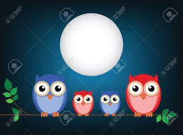 night owl stock photos u0026 pictures royalty free night owl images