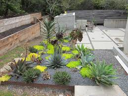desert landscape backyard ideas for your home desert landscaping