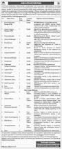 government jobs in balochistan in various fields november 2017