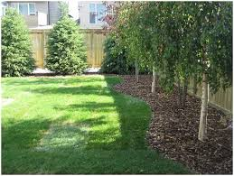 Simple Backyard Landscaping Ideas by Backyards Impressive 25 Best Ideas About Backyard Landscape