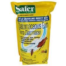 17 organic ant killer for vegetable garden pinterest flower