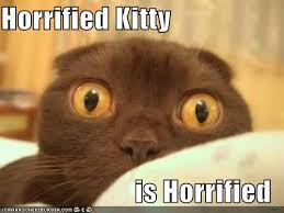Horrified Meme - the frolicking gadfly august 2011