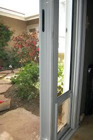 sliding glass doggie doors window pet door into catiopet for screen cat sash craftmine co