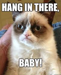 Hang In There Meme - hang in there baby cat meme cat planet cat planet