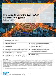 cio guide to using sap hana platform for big data