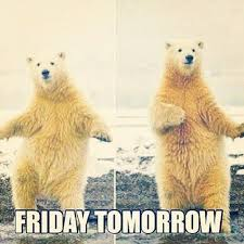 Almost Friday Meme - cute emergency on humor silly memes and funny pics