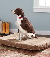 Ll Bean Dog Bed Premium Denim Dog Bed Replacement Cover Rectangular Free