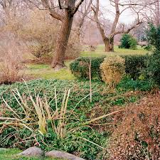 Family Garden Brooklyn Brooklyn Botanic Garden Ross Mantle