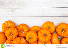 fall pumpkins background pictures autumn pumpkin thanksgiving background stock photo image 44894184