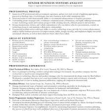 Resume Business Analyst Sample by Senior Business Systems Analyst Resume Sample Mla Style Papers