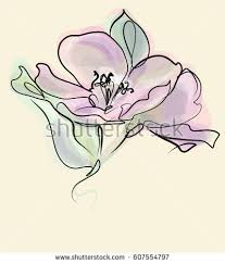 lily flower stock images royalty free images u0026 vectors shutterstock
