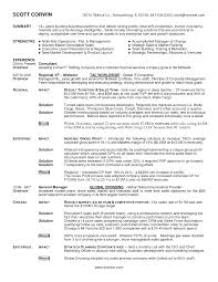 Sales Resume Sample 100 Sales Executive Resume Sample Word 8 Resume Samples