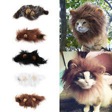 Halloween Costumes Cats Wear Cat Clothing Ebay