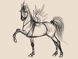 fantasy horse sketch by whiteligtning on deviantart