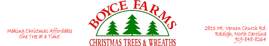 boyce farms making christmas trees affordable one tree at a time