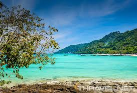 phi phi natural resort thailand u2013 a gateway for wild nature u0027s lovers