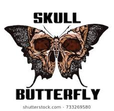butterfly skull stock images royalty free images vectors