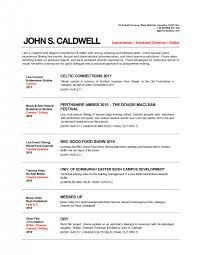 Musician Resume Template Enchanting Music Resume Example Resume Template For College