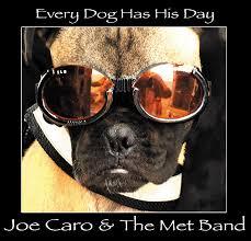 dog photo album guitarist joe caro the met band release new album every dog has