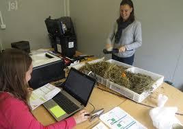 chambre d agriculture de l allier charolles un gain de temps et d argent