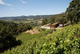 houzz tour recycling an old cabin in the sonoma wine country