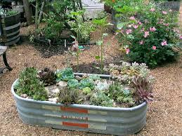172 best galvanized gardens images on pinterest garden ideas