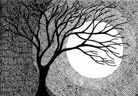winter tree and moon drawing by marta harvey