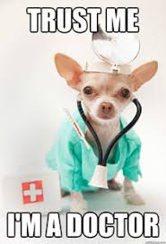Dog Doctor Meme - so you want a career in animal welfare part 3 the official